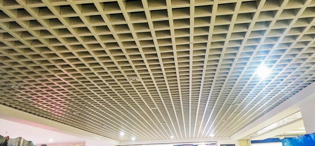 techo de la red